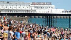 Brighton sunbathers