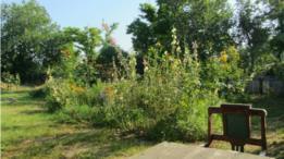 Блог британки: мои украинские каникулы