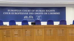 المحكمة الأوربية لحقوق الإنسان.
