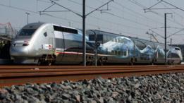 TGV francés