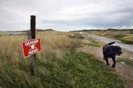 Bahía Surf en 2007, antes de ser desminada. Malvinas/Falklands.