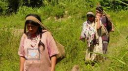 چیمانے قبائل