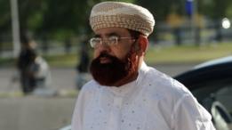 حامد سعید