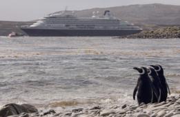 Pingüinos observan un crucero en Malvinas/Falklands.