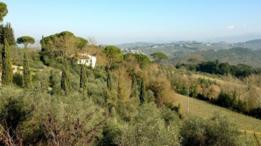 Colinas de San Casciano