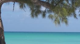 Playa Paraíso, Cayo Largo, Cuba.
