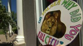 A placard of Cecil the lion