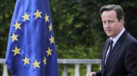 Cameron and the EU flag