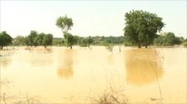 Flooded land