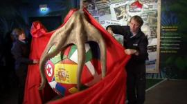 Memorial unveiling to Paul the oracle octopus
