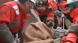 Coast guards with a dog