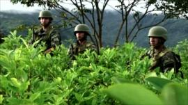On the front line of Peru's drugs war