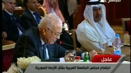 Nabil Elaraby, Secretary General of the Arab League