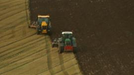 Two tractors ploughing a field