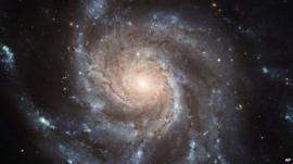 File photo: Galaxy