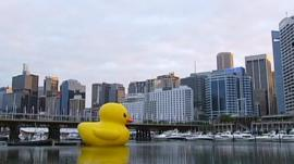 Giant duck in Sydney Harbour