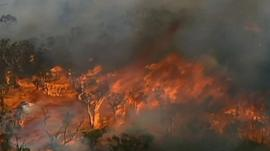 Aerial image of wildfire