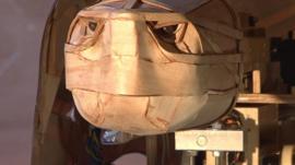 Tortoise robot