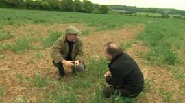 Farmer Archie Montgomery
