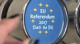 Referendum badge