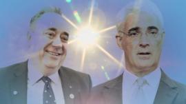 salmond and darling sunny