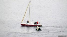 Killer whale surfaces by a family's boat