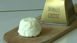 A piece of donkey cheese