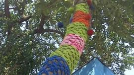 Knitted tree in Sao Paulo, Brazil