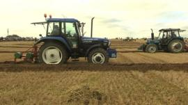 Tractors pulling ploughs