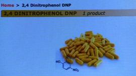 Website image of DNP