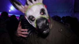 Man at club wearing horse mask