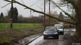 Cars drive under fallen tree