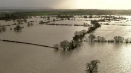 Flooded fields