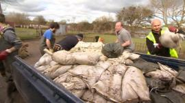Floods clear-up operation begins in Somerset
