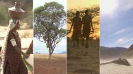 Four different images of drought