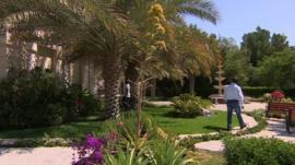 Kuwaiti garden