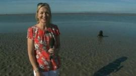 Carol Kirkwood with dog in background