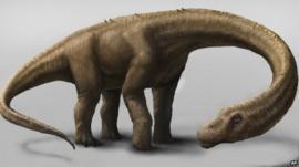 Dreadnoughtus dinosaur