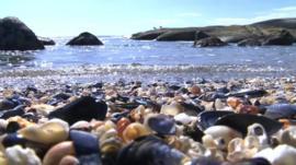 Saldanha Bay, South Africa