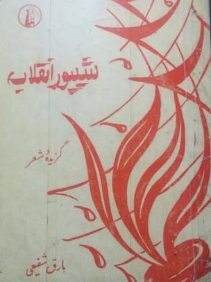 تصویری از مجموعه شیپور انقلاب