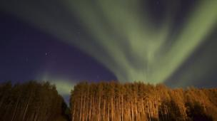 'Northern Lights' from the web at 'http://ichef.bbci.co.uk/news/304/cpsprodpb/15354/production/_86586868_northernlights01.jpg'