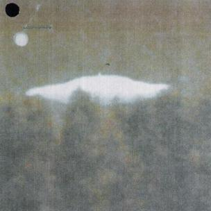 Photo of UFO above trees