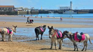 Donkeys on the beach at Scarborough, England