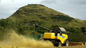 Harvester at work in a field
