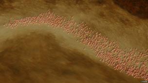 A swirl of flamingos (c) Klaus Nigge