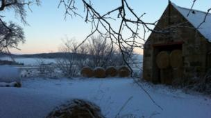 Hay bales covered in snow
