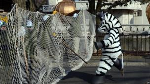 Annual emergency drill at Tama Zoo in Tokyo on 1/2/13