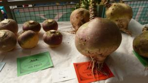 Turnips on a table