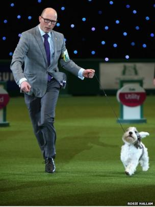 Winners of Best in Show category of Crufts 2013, Gavin Robertson with Jilly, a Basset Griffon Vendeen during the final day at Crufts Dog Show
