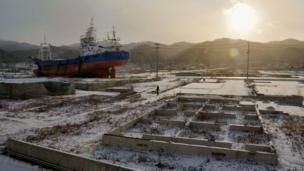 A local resident and a dog walk near a ship brought ashore by the 11 March 2011 tsunami and earthquake in Kesennuma, Miyagi Prefecture